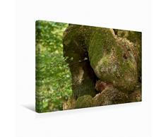 Premium Textil-Leinwand 45 x 30 cm Quer-Format Kuschel-Tier | Wandbild, HD-Bild auf Keilrahmen, Fertigbild auf hochwertigem Vlies, Leinwanddruck von Angelika Keller