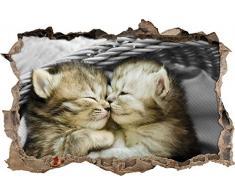 Pixxprint 3D_WD_5162_62x42 Zwei süße Babykatzen im Korb Wanddurchbruch 3D Wandtattoo, Vinyl, schwarz / weiß, 62 x 42 x 0,02 cm