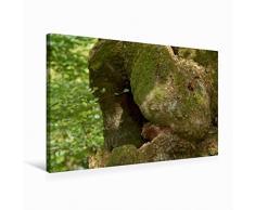 Premium Textil-Leinwand 75 x 50 cm Quer-Format Kuschel-Tier | Wandbild, HD-Bild auf Keilrahmen, Fertigbild auf hochwertigem Vlies, Leinwanddruck von Angelika Keller