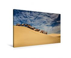 Calvendo Premium Textil-Leinwand 90 cm x 60 cm quer, Mühsam | Wandbild, Bild auf Keilrahmen, Fertigbild auf echter Leinwand, Leinwanddruck: Auch für Kamele ist Wüstensand kein Kinderspiel Natur Natur