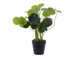 Delamaison DAA4063275 Kunstpflanze, Kunststoff, Mehrfarbig, 61 x 34 cm
