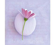 Eurographics Leinwandbild H-K-BA3135 Bild auf Leinwand Sweet Flower, 20 x 20 cm