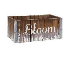 CWI Gifts Bloom Blumenkasten aus Holz, Mehrfarbig