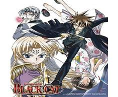 Great Eastern Entertainment schwarz Katze Rachsüchtiger Zug Wall Scroll, 33 von Blumenkasten