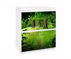 Apalis 91184 Möbelfolie für Ikea Malm Kommode - Selbstklebe Verborgene Lichtung, größe 2 mal, 20 x 40 cm