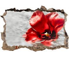 Pixxprint 3D_WD_S1535_92x62 rote Mohnblüte im Wasser Wanddurchbruch 3D Wandtattoo, Vinyl, bunt, 92 x 62 x 0,02 cm