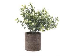 HC Star Kunstpflanze Mini Fake Topfpflanzen Dekorative lebensecht Blumen Grün Pflanzen Round Pot Weiß NEW03