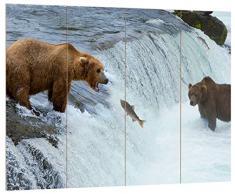 Pixxprint HBVs_2650_80x60 Bär fängt Lachs in Wasser MDF-Holzbild im Bretterlook Wanddekoration, bunt, 80 x 60 x 2 cm