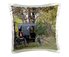 3drose PC _ 108182 _ 1 amischen Buggy von angelandspot-pillow Fall, 16 von 40,6 cm