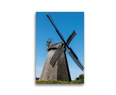 Premium Textil-Leinwand 30 x 45 cm Hoch-Format Wallholländer, Windmühle, Bierde   Wandbild, HD-Bild auf Keilrahmen, Fertigbild auf hochwertigem Vlies, Leinwanddruck von Barbara Boensch