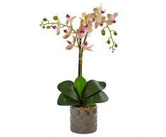Nearly Natural Fast Natur Double Phalaenopsis Orchidee aus Seide, in Übertopf, cremefarben/Orchidee