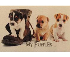 oKu-Tex Design Fußmatte Hunde Welpen Puppies, lustiges & niedliches Motiv, rutschfest & waschbar, Deko Dekorativ, beige, 40 x 60 cn