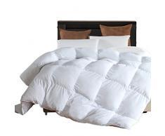 llovsoul Down Alternative Tröster Bettdecke Einsatz 100% Plüsch gebürstet Mikrofaser Cover, solide white-king (269,2 x 228,6 cm), Mikrofaser, weiß, Queen