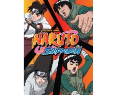 Great Eastern Entertainment Naruto Shippuden Team Guy Wall Scroll, 33 von Blumenkasten