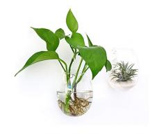 Ivolador Wandmontierter Blumentopf Reagenzglas Blumenvase Tischplatte Glas Terrariumin Holzständer ideal für Hydrokulturpflanzen Egg Shape farblos