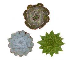 Pasiora Echeveria Mix im 12cm Topf, verschiedene große Pflanzen, Rosetten Geschenkset (3 Stück)
