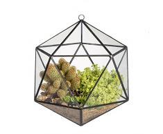 Geometrisches Terrarium, zum Aufhängen, modernes, Ikosaeder-Glas, offen, Mikro-Amt-Landschaft, Blumentopf