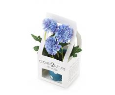 Closer 2 Nature Artificial Flower, Künstliche Mini Garten Chrysantheme in Geschenk Box, 19 cm, blau