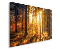 Feeby, Leinwandbild, Bilder, Wand Bild, Wandbilder, Kunstdruck 80x120cm, WALD, BAUM, NATUR, SONNE, BRAUN