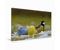 Calvendo Premium Textil-Leinwand 120 cm x 80 cm Quer Kohlmeise mit Ostereier | Wandbild, Bild auf Keilrahmen, Fertigbild auf Echter Leinwand, Leinwanddruck