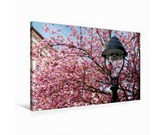 Premium Textil-Leinwand 90 x 60 cm Quer-Format Laterne vor Zierkirschenblüten   Wandbild, HD-Bild auf Keilrahmen, Fertigbild auf hochwertigem Vlies, Leinwanddruck von Wolfgang Reif