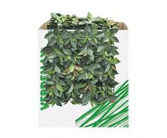 Verdemax 5635 50 x 50 cm verdecor Heckenschere mit Blättern wie Glanzmispeln