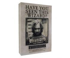 Harry Potter Sirius Luminart Leinwandbild, beleuchtet, Schwarz