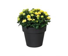 Elho Green Basics Top Planter 40 - Blumentopf - Baumwoll Weiss - Draußen - Ø 39.1 x H 32.8 cm
