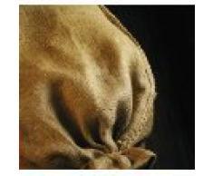 NOOR PREMIUM Jutesäcke 2er Pack Gr. M 65 x 115 cm I 2x Multifunktionaler Jutesack I Winterschutz für Topf- & Kübelpflanzen I Frostschutz für Pflanzen I Pflanzen-Überwinterung Ökosack I Gartensack Natur