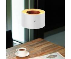 Oligo TROFEO LED Pendelleuchte mit berührungslosem Dimmer Ø 20 H: 12 cm, weiß matt G42-886-14-21, EEK: A+. Diese Leuchte enthält eingebaute LED-Lampen. A++ (LED), A+ (LED), A (LED). Die Lampen können in der Leuchte nicht ausgetauscht werden.
