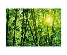 ROLLER Fototapete, Mustertapete 8-teilig Bambus Wald